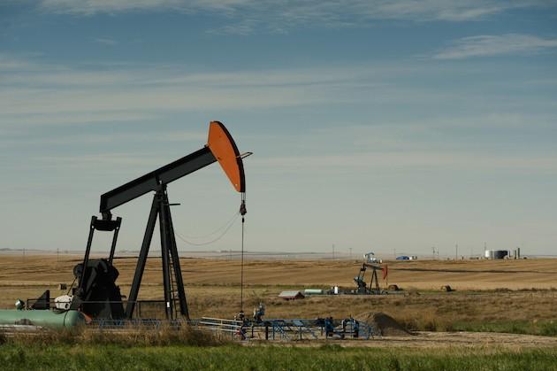field-of-oil-pumps